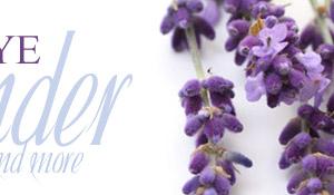 Blue Skye Lavender